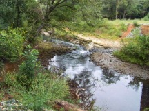 Coheelee Creek